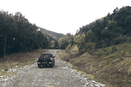 Руйнується унікальна лісова дорога, яку відновили п'ять років тому
